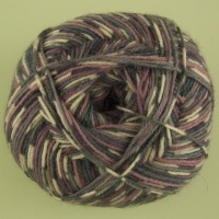 WYS - Signature 4 Ply - Country Birds - 864 Wood Pigeon