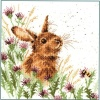 The Meadow (Counted Cross Stitch Kit)