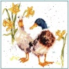 Ducks and Daffs (Counted Cross Stitch Kit)