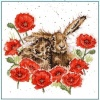 Love is in the Hare (Counted Cross Stitch Kit)